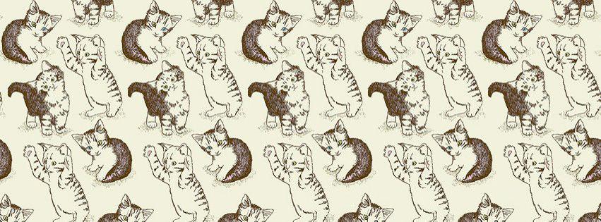 cute little playful kittens