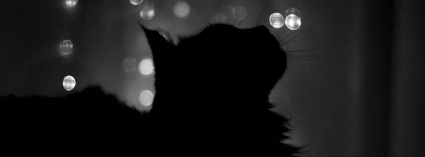 Facebook titelbilder black&white dress