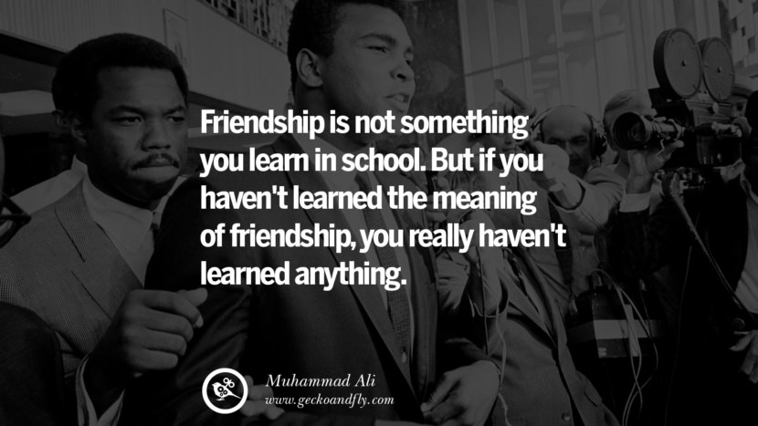 Friendship is not something you learn in school. But if you haven't learned the meaning of friendship, you really haven't learned anything. - Muhammad Ali instagram twitter reddit pinterest tumblr facebook