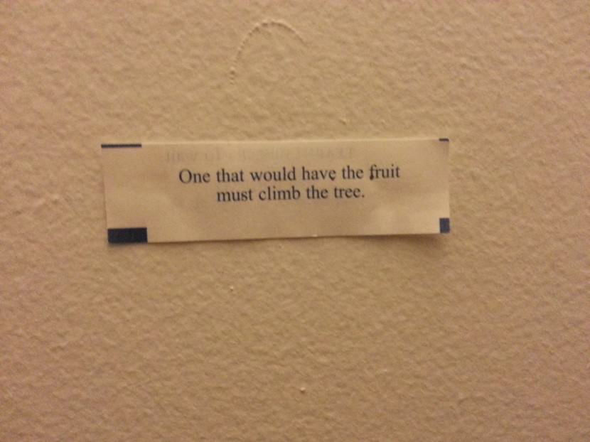 One that would have the fruit must climb the tree. Best Inspirational Chinese Japanese Fortune Cookie Quotes and Sayings On Life For Facebook And Tumblr