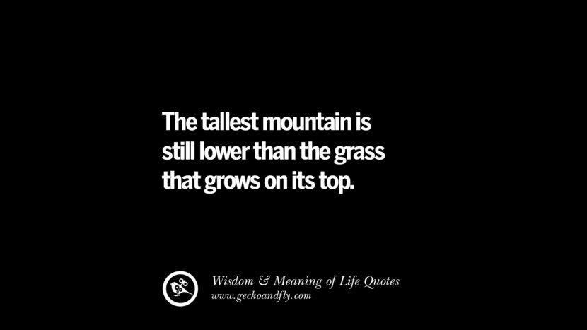 The tallest mountain is still lower than the grass that grows on its top.