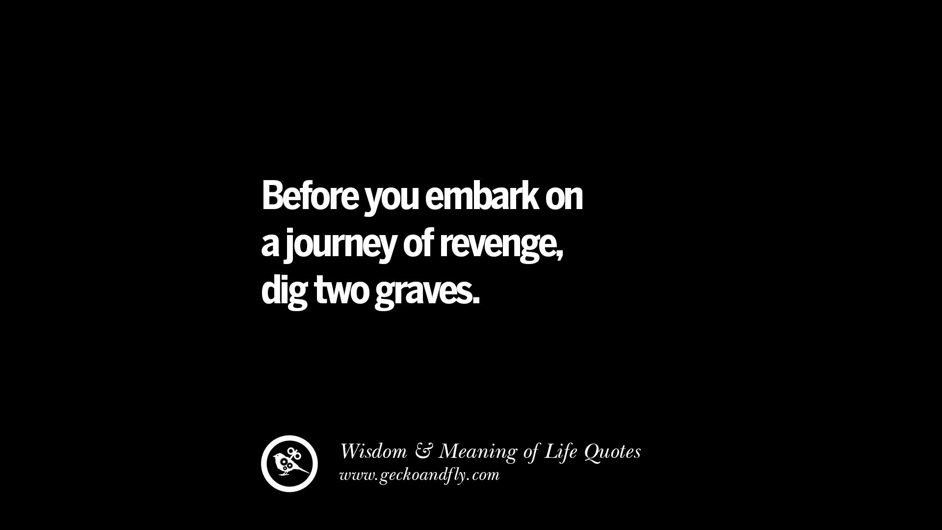 Quotes Life Journey 24 Funny Eye Opening Quotes About Wisdom Truth And Meaning Of