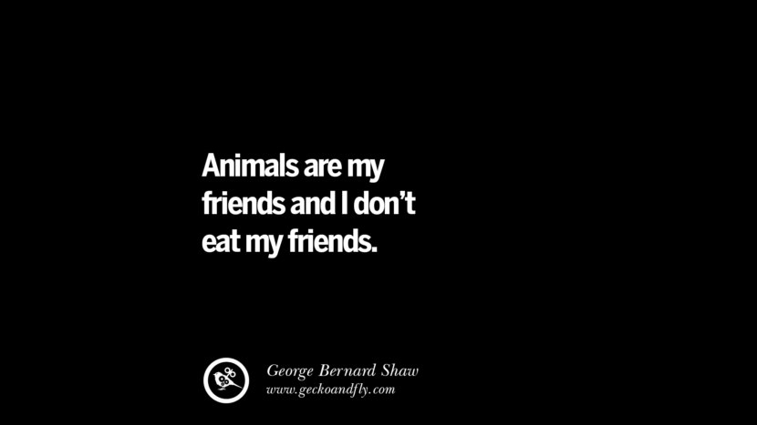 Animals are my friends and I don't eat my friends. - George Bernard Shaw Delicious Quotes on Vegetarianism, Being A Vegetarian And Killing Animals