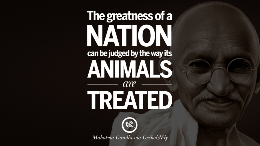 The greatness of a nation can be judged by the way its animals are treated. - Mahatma Gandhi