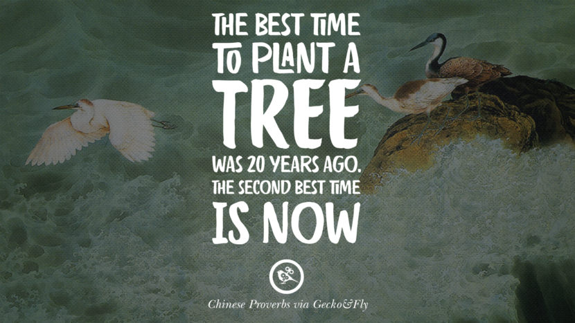The best time to plant a tree was 20 years ago. The second best time is now. Ancient Chinese Proverbs and Quotes on Love, Life, Wisdom, Knowledge and Success