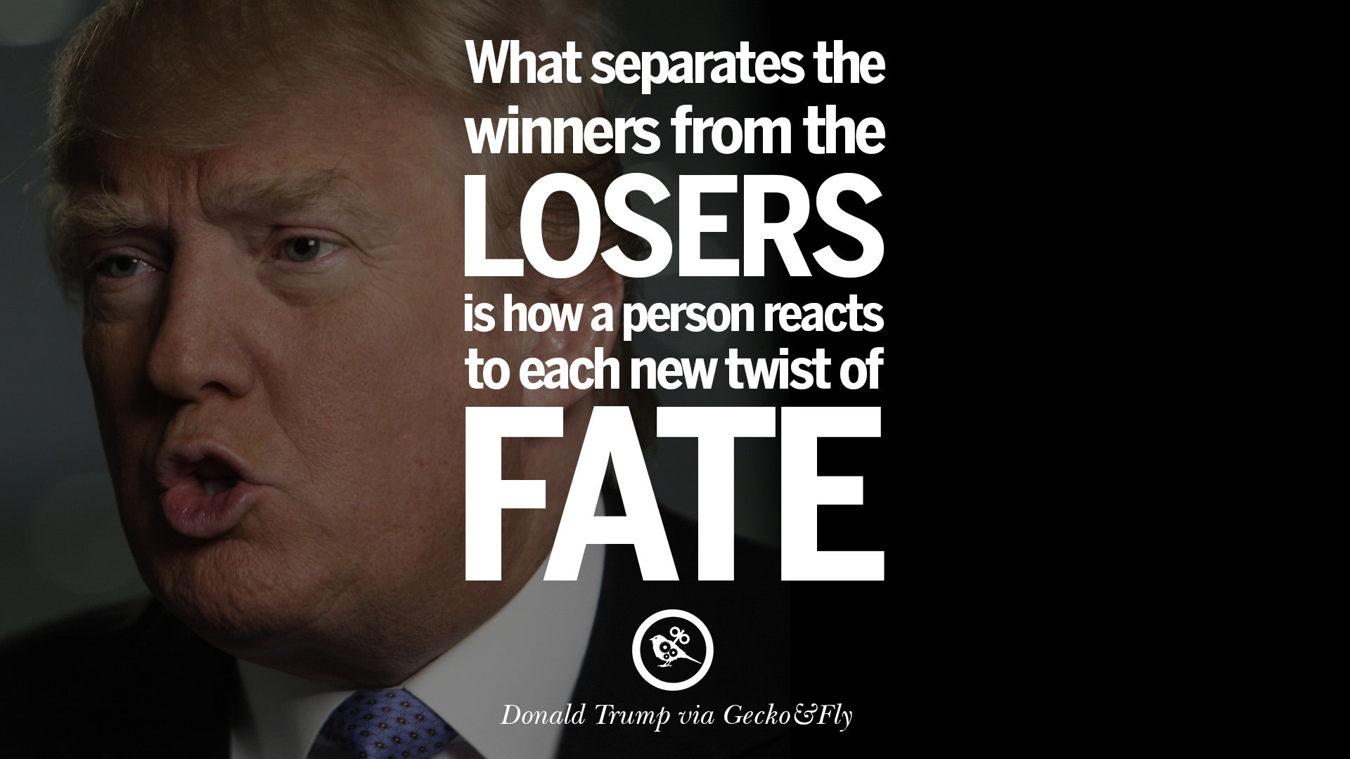 Entrepreneurship Quotes Classy 12 Quotesdonald Trump On Success Failure Wealth And