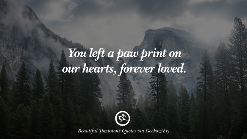 you left a paw print on our hearts, forever loved. Beautiful Tombstone Quotes For Your Beloved Cat or Dog