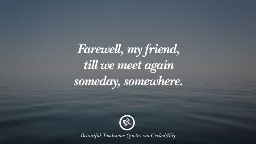 Farewell, my friend, till we meet again someday, somewhere. Beautiful Tombstone Quotes For Your Beloved Cat or Dog