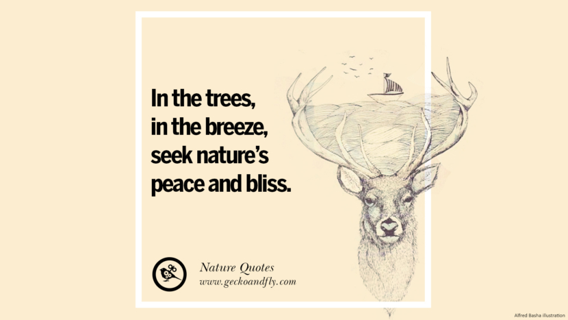 In the trees, in the breeze, seek nature's peace and bliss. Beautiful Quotes About Saving Mother Nature And Earth