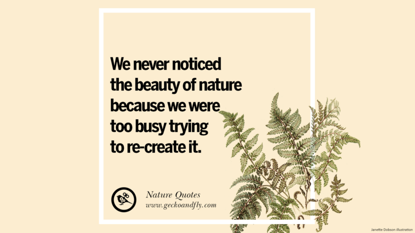 We never notices the beauty of nature because we were too busy trying to re-create it. Beautiful Quotes About Saving Mother Nature And Earth