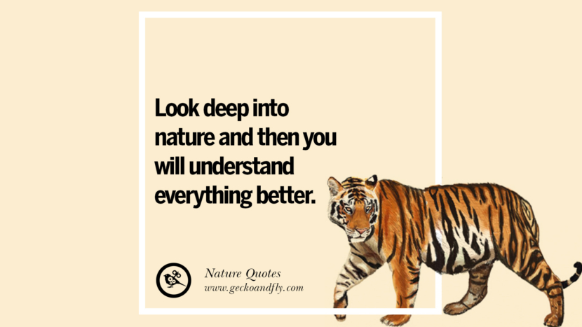 Look deep into nature and then you will understand everything better Beautiful Quotes About Saving Mother Nature And Earth