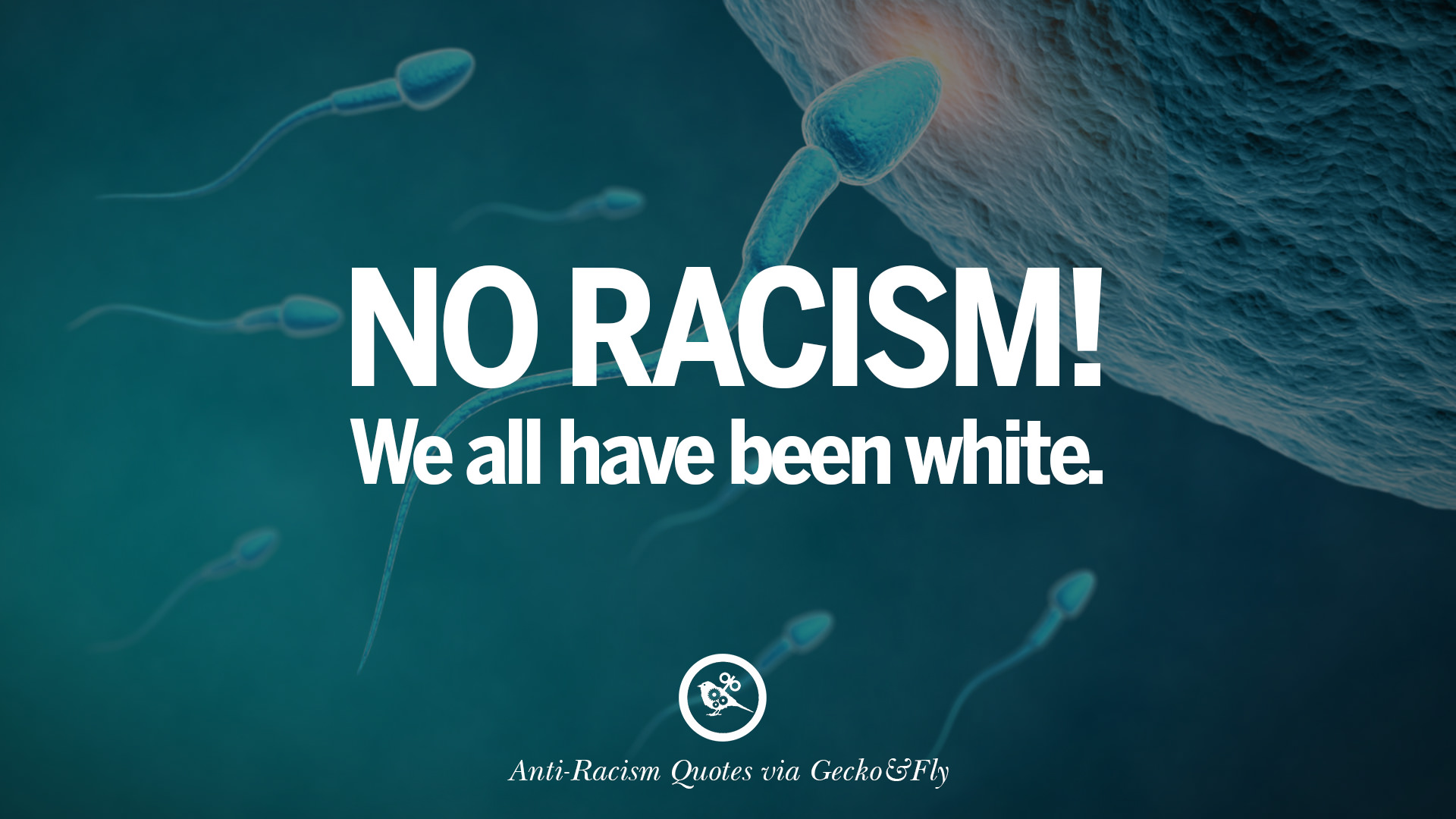 16 Quotes About Anti Racism And Against Racial Discrimination