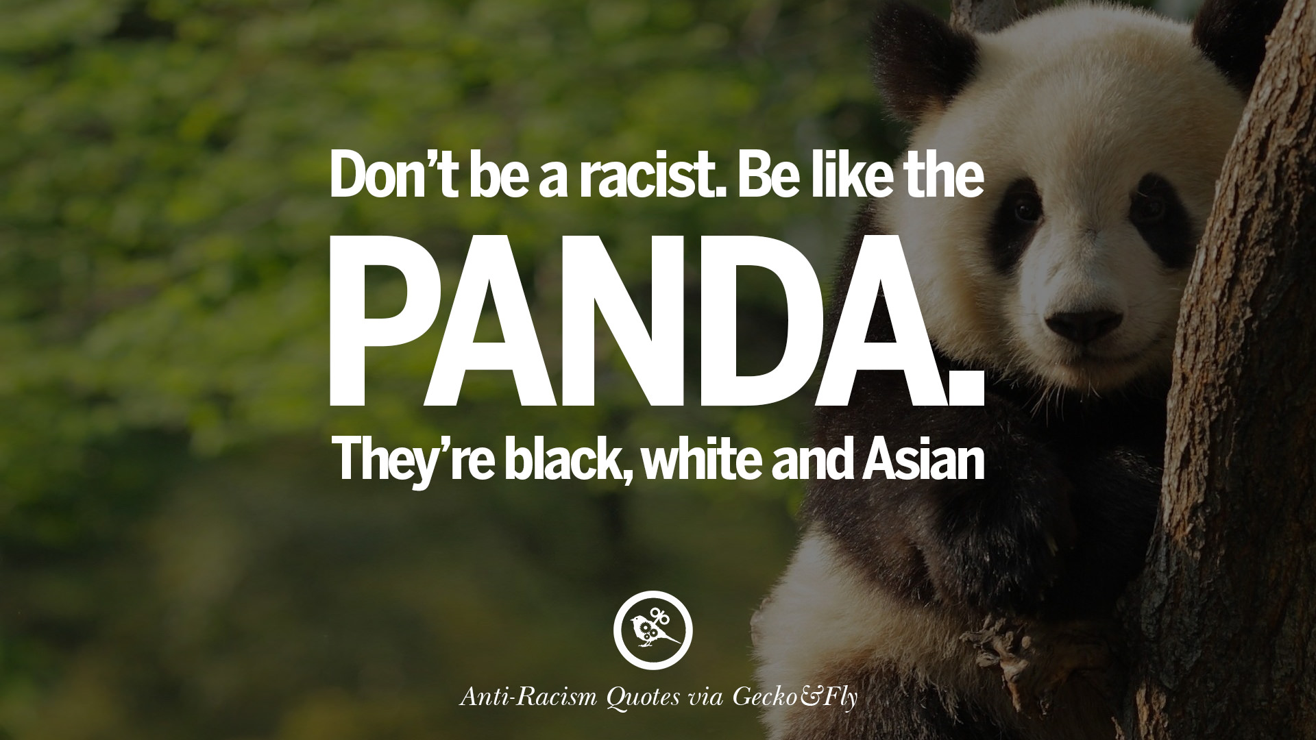 Panda Quotes 16 Quotes About Anti Racism And Against Racial Discrimination