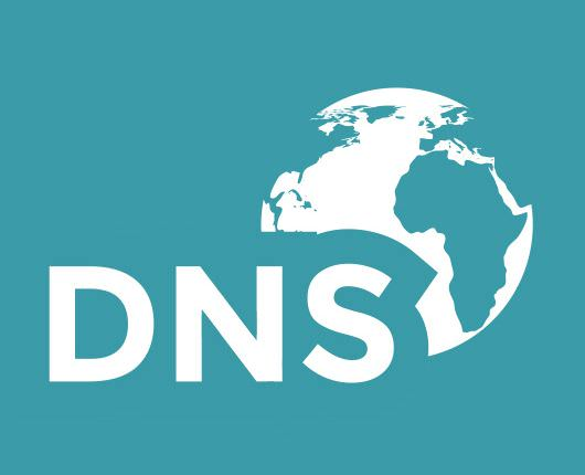 530-dns-server-test