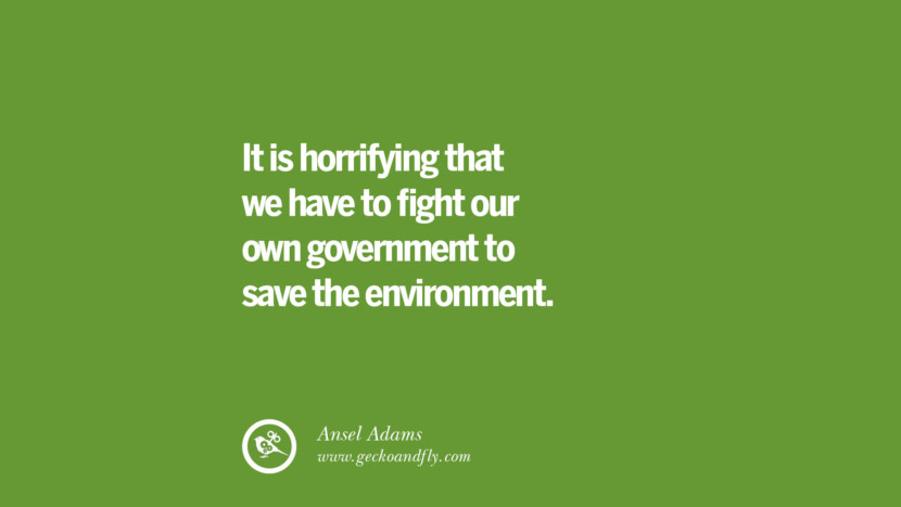 It is horrifying that we have to fight our own government to save the environment. – Ansel Adams Sustainability Quotes On Recycling, Energy, Ecology, And Biodiversity
