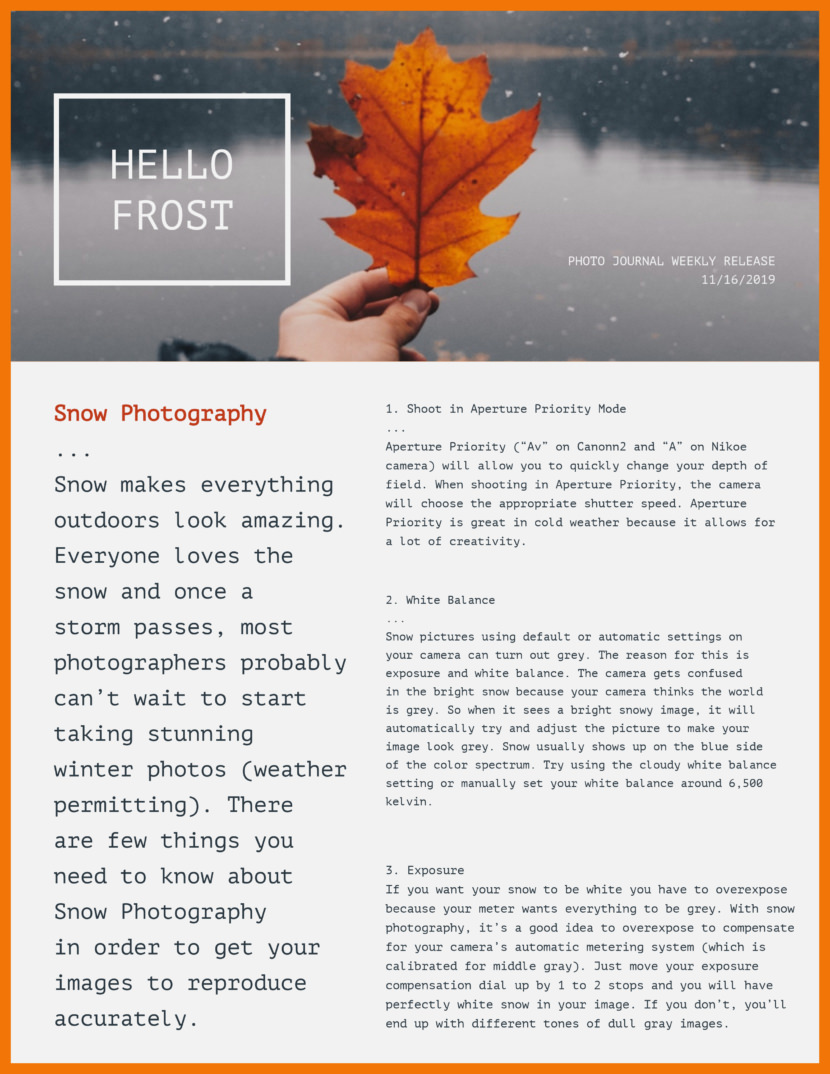 photography Screenshot of free printable newsletter template for school and communities